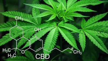 Health Benefits of Medical Marijuana: From Anxiety to Seizures, 5 Problems Cannabis Can Help You Fight