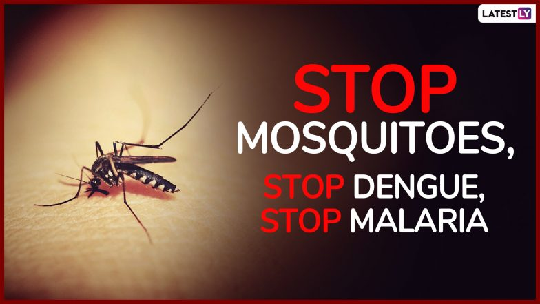 World Mosquito Day 2019: Share These Catchy Slogans On Mosquito And Malaria To Raise Awareness Against World's Deadliest Animal!
