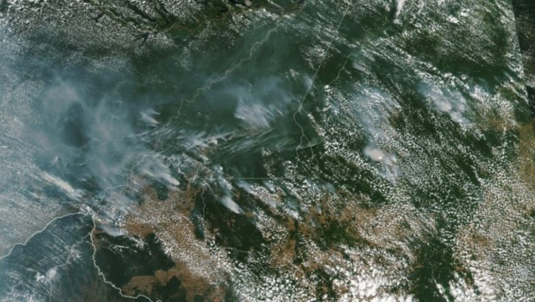 Amazon Rainforest Fires Visible From Space! NASA Shares Devastating Images of Smoke as Brazil Forests Burn at 'Record Rate'