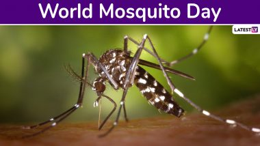 World Mosquito Day 2019: Know Date, History and Significance of The Day Creating Awareness About World's Deadliest Animal