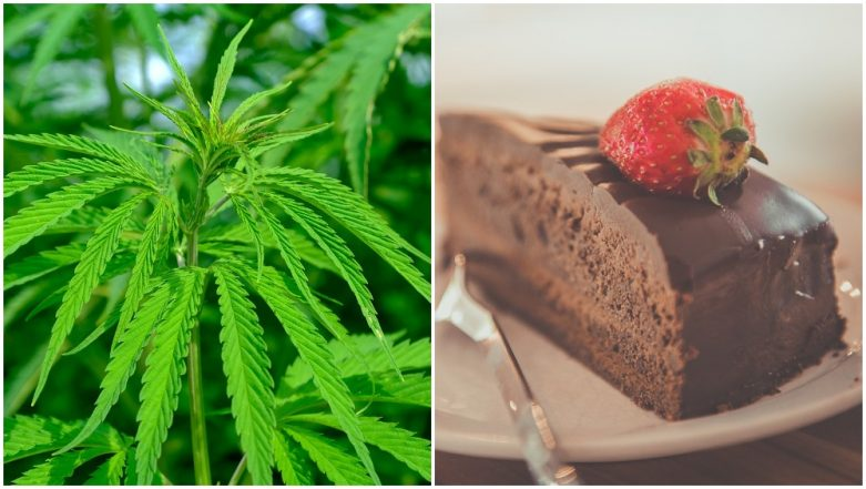 Metal Detectorists Unknowingly Eats Cannabis-laced Cakes Offered by Stranger, Sings And Dances Before Getting Hospitalised
