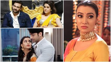 Shaheer Sheikh-Erica Fernandes, Nalini Negi, Madhurima Tuli-Vishal Aditya Singh – Take a Look at the TV Newsmakers of the Week