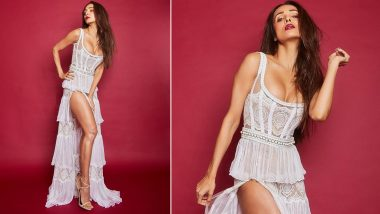 Vogue Beauty Awards 2019: Malaika Arora is HOTNESS Personified in her White Aadnevik Lacy Gown (View Pics)