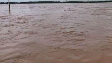 Telangana Rains: Second Level Flood Warning Issued After Godavari River Overflows