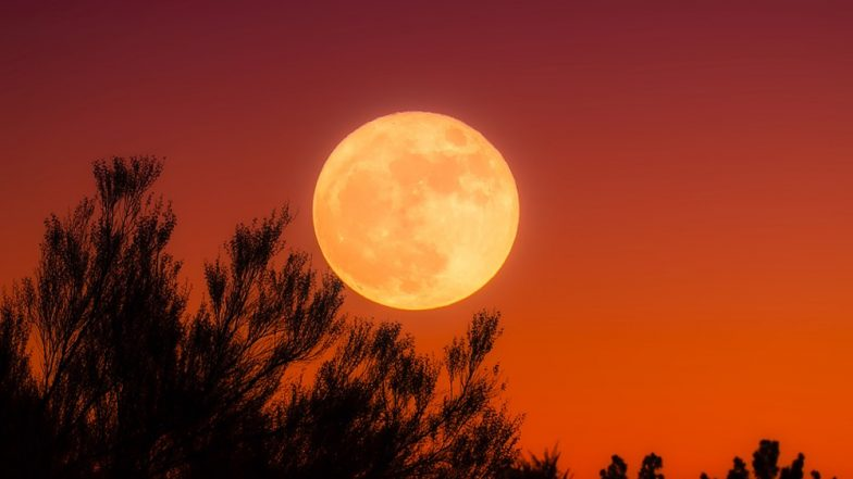 It's a full, micro, harvest moon on Friday the 13th