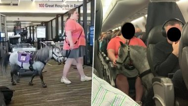 Horse on Plane! Woman Takes a Pony, Her Emotional Support on American Airlines Flight Surprising Fellow Passengers (Watch Video)