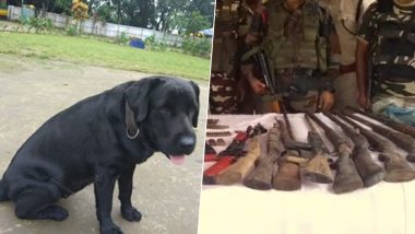 Indian Army's Tracker Dog 'Jaari' Helps Recover Huge Cache of Arms in Assam, See Pics