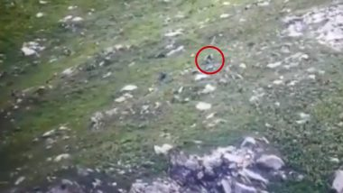 Video Emerges of Infiltration Bid by Pakistani Terrorists in Kupwara Foiled by Indian Army in July