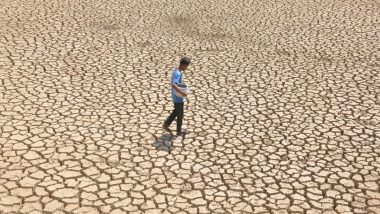 Centre Declares 10 Jharkhand Districts 'Drought' Affected