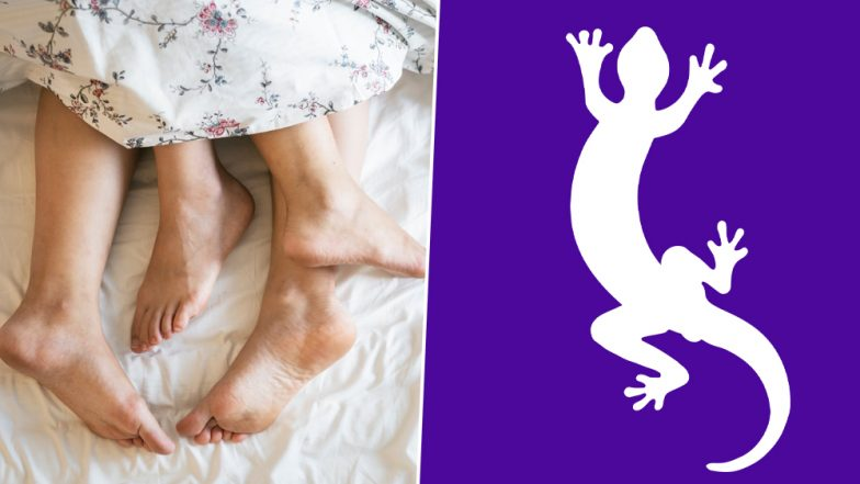 Malaysian Man Caught Sleeping With Two Women Says, He Was Scared of Lizard in His Room
