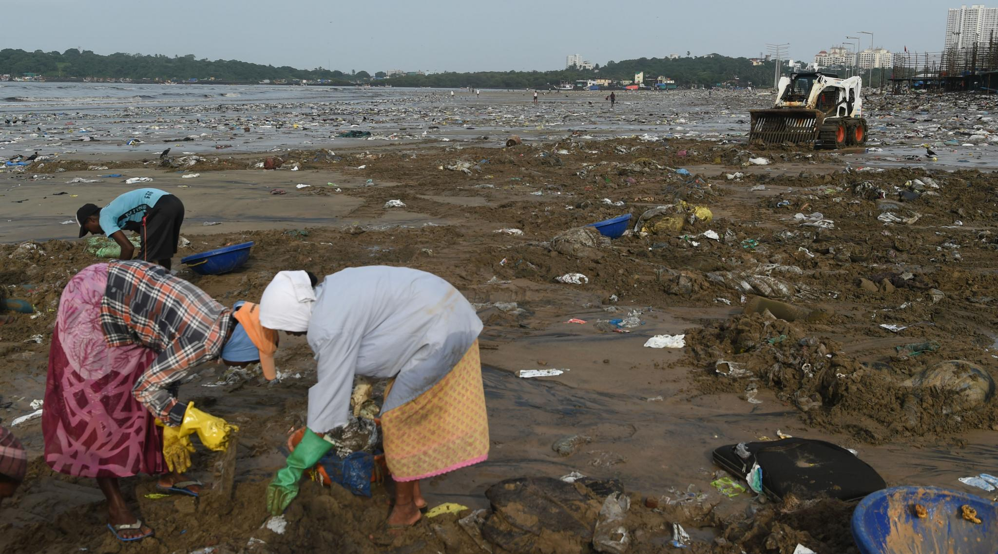 Mumbai to Be Hit by Global Warming: City Fears for Homes and Lives Amid Rising Seas, Shrinking Mangroves