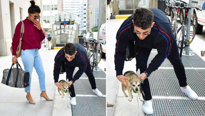 Priyanka Chopra and Nick Jonas Stroll on NYC Streets With Their Pet Dog Diana and The Pics Are Adorable!