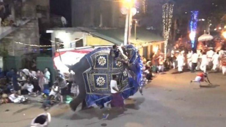 Sri Lanka Elephants Run Amok at Religious Festival, 17 Injured (Watch Video)