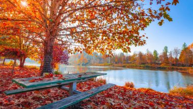 First Day of Fall 2019 in September Date: What Is Fall Equinox? What Happens During the Autumn Equinox? All Your Questions Answered