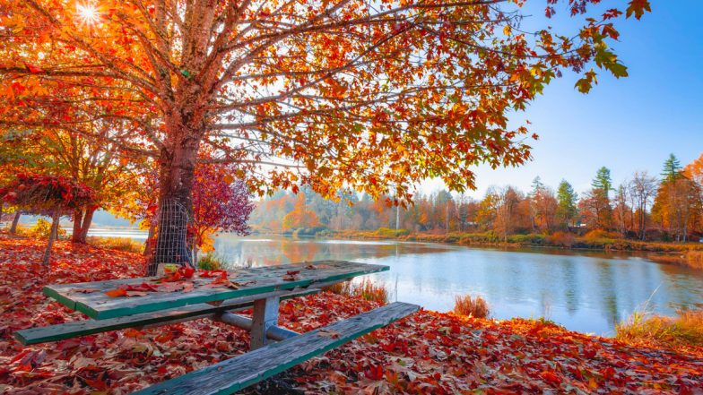 First Day of Fall 2019 on September: What Is Fall Equinox? What Happens During the Autumn Equinox? All Your FAQs Answered