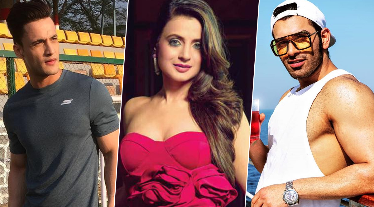 Bigg Boss 13 Day 1 Preview: Ameesha Patel Enters the House, Paras Chhabrra Calls Asim Riaz Racist During Their Fight