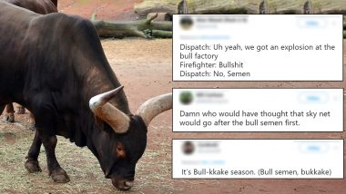 Bull Semen Explosion in Australian Farm Gives Netizens Obvious Reasons to Crack Hilarious Jokes, Funny Memes Go Viral