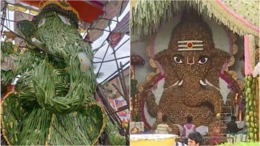Ganesh Chaturthi 2019 Eco-Friendly Ganesh Idols: From Coconut to Aloe Vera, This Year Bappa Turns Green