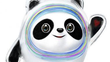 Bing Dwen Dwen, the Panda, is the Mascot for Beijing 2022 Winter Olympics & Paralympic (Watch Video)