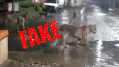 Fact Check: Truth About Viral Video Being Circulated on WhatsApp as Lions Roaming in Thane Godhbunder Road