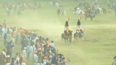 Bandi Chhor Diwas 2019: 'Nihang Singhs' Showcase Horse-Riding Skills at Sports Fair Organised in Amritsar (Watch Video)