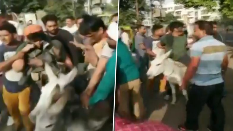 Rajasthan: BSP Workers Parade Party Leaders on Donkeys, Blacken Their Faces For Involvement in Anti-Party Activities (Watch Video)