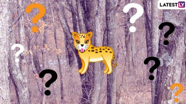 Amur Leopard Hides in Plain Sight in This Viral Pic, Can You Spot It? (View Pic)