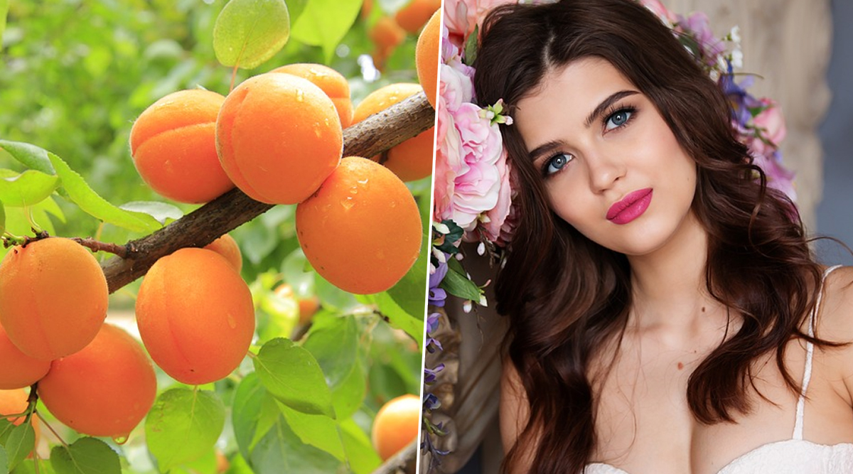 Home Remedy Of The Week: Apricots For Clear, Glowing & Healthy Skin; How This Stone Fruit Can Reduce Blackheads (Watch Video)
