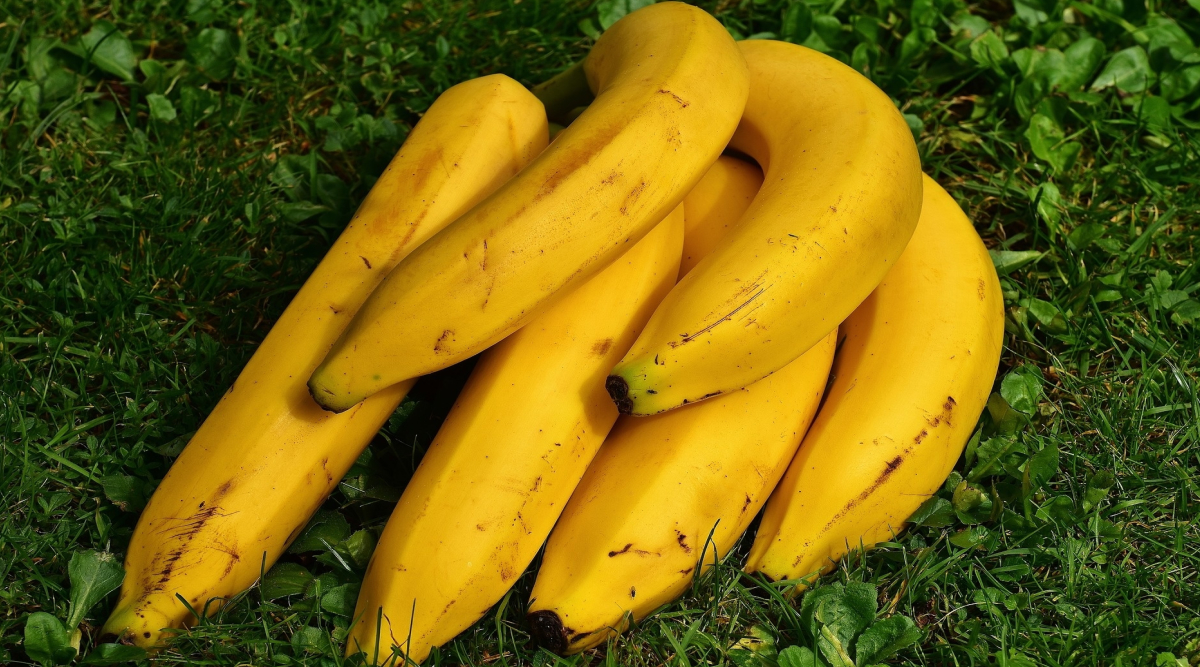 Japanese Morning Banana Diet Helps You Lose Weight and Keep It Off