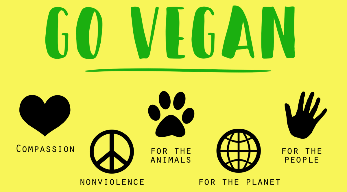 World Vegan Day 2019: Should You Go Vegan? Top Reasons to Follow a Plant-Based Diet