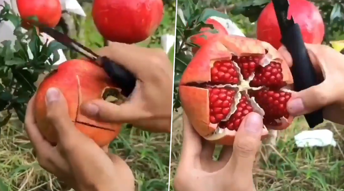 This Pomegranate Peeling Hack Video Will Make You Wonder If Your Whole Life is a Lie! Check Funny Memes and Jokes