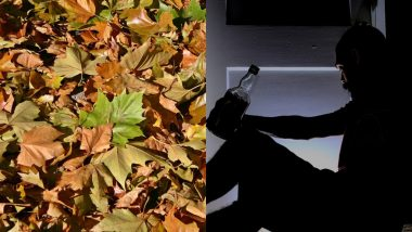 Drunk Man Jailed For Trying to Have Sex With a Pile of Leaves at Manchester Hotel Car Park