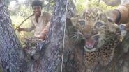 Men Harass Leopard Cub Near Gir Forest, Netizens Share Shocking Video Looking For The Culprits