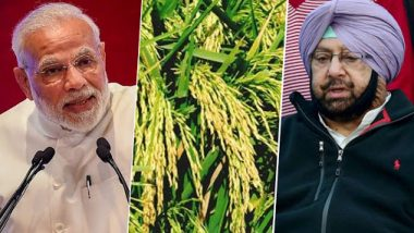 Narendra Modi Govt Sanctions Rs 26,707 Crore to Punjab for Paddy Procurement of 161.50 Lakh MTs, Captain Amarinder Singh Welcomes Move