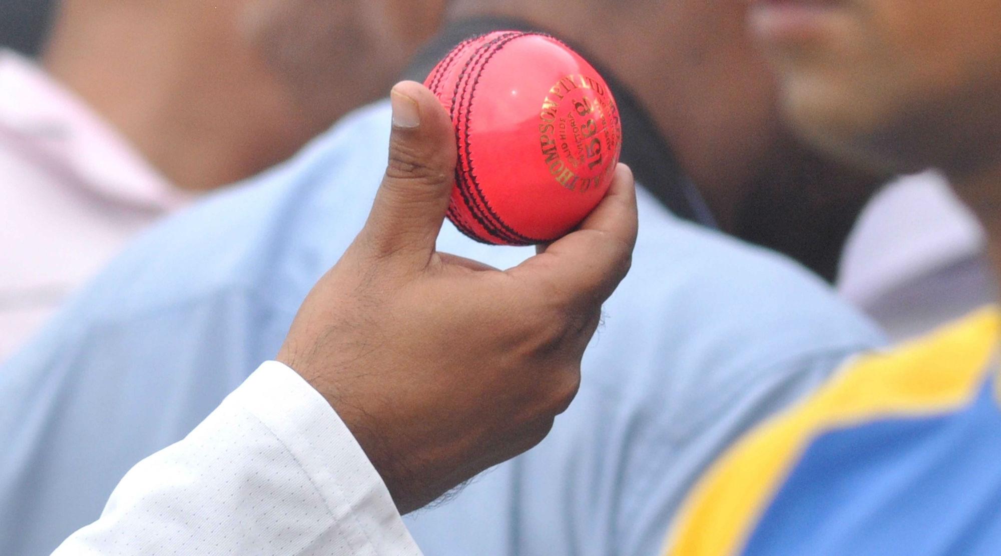 India vs Bangladesh Day-Night Test 2019: Eden Gardens Curator Sujan Mukherjee Says 'Shine Less on SG Pink Ball than Kookaburra'