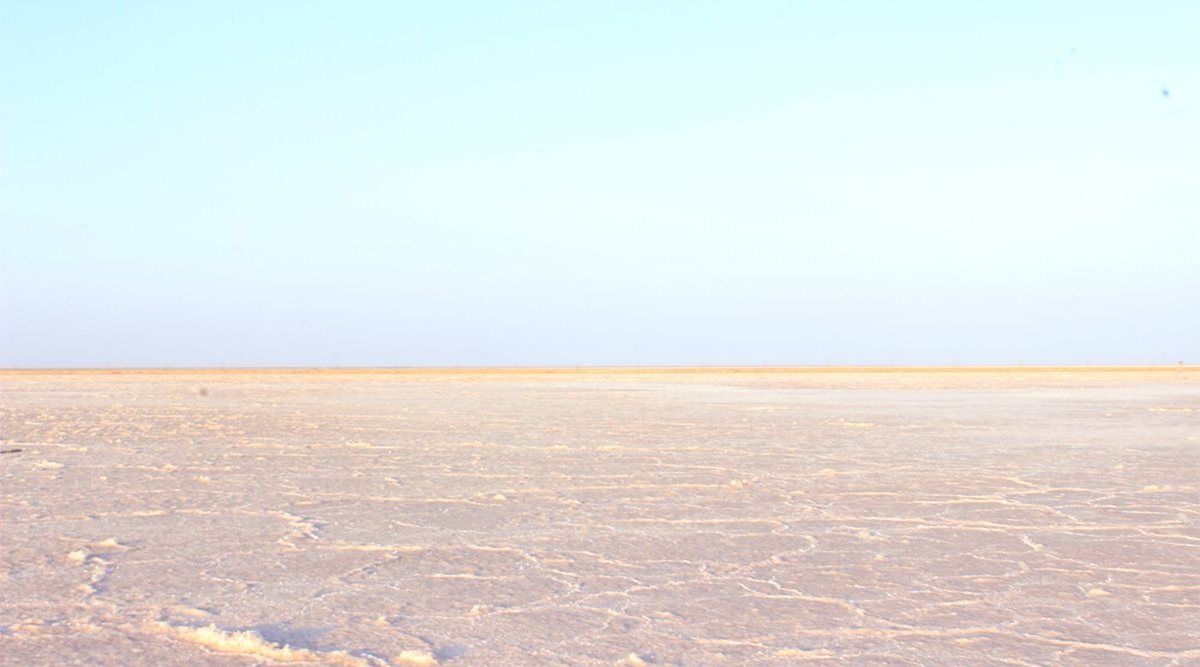 Travel Tip of the Week: Rann Utsav 2019 to Usher Tourists to Gujarat, All You Need to Know About White Desert Festival of India
