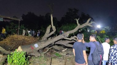 Aarey Colony Tree Felling For Metro Car-Shed: Start Procedure to Withdraw Cases Against Protesters, CM Uddhav Thackeray Directs Home Department