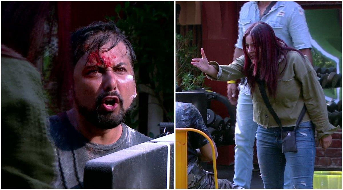 Bigg Boss 13 Day 19: Siddhartha Dey Crosses The Line Yet Again, Calls Shehnaaz Gill 'Do Kaude Ki Ladki' (Watch Video)
