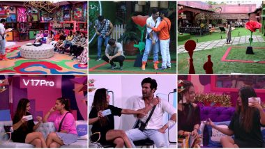 Bigg Boss 13 Day 23 Live Updates: Its Team Paras Chhabra's Turn First