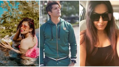 Bigg Boss 13: Karanvir Bohra, Kamya Punjabi, Kishwer Merchantt, Ex-Contestants SLAM The Current Season