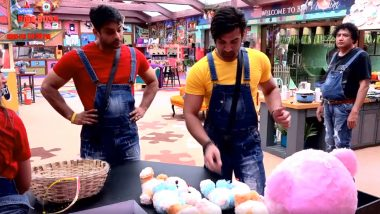 Bigg Boss 13 Episode 13 Update | 16 October 2019: The Housemates Are 'Wahiyat' Task Performers