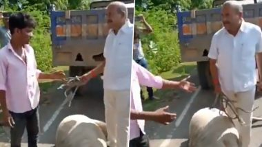 Kota: Sweeper Beaten, Abused by Sangod Nagar Palika Chairman For Carrying Dead Cow; Watch Video