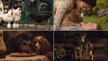 Lady and the Tramp New Trailer: We Are in for a Treat with This Photorealistic Story of Doggos (Watch Video)