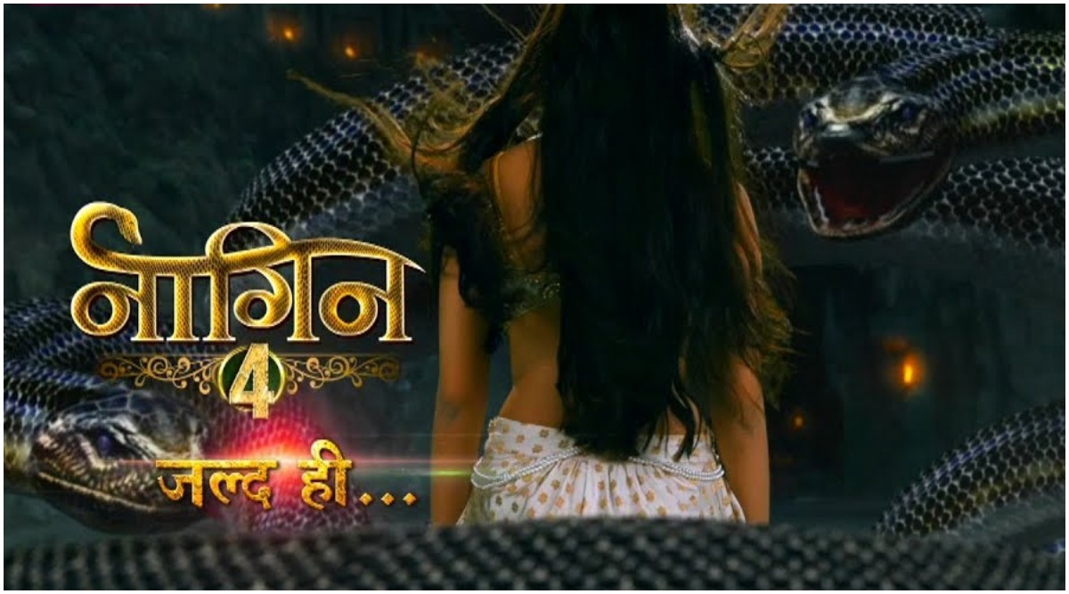 Naagin 4: Ekta Kapoor's Supernatural Show Pushed to December, Here's Why (Watch Promo)