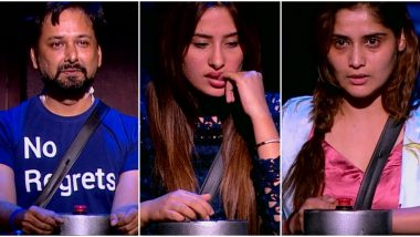 Bigg Boss 13 Midnight Eviction: Mahira Sharma, Arti Singh, Siddhartha Dey – Who Will Bid Adieu to Salman Khan's Reality Show (Watch Video)