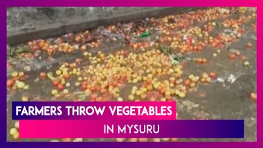 Karnataka: Farmers Throw Vegetables In Mysuru Amid Low Prices Following Heavy Rains