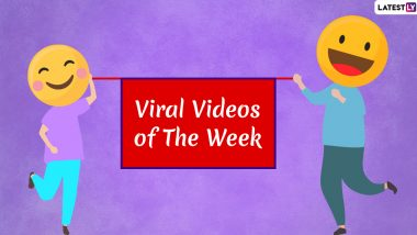 Viral Videos of the Week: From Toddler Complaining About His Mom to Indian Tourist's Disgraceful Act, Watch Seven Clips That Surfaced Online