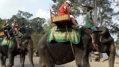 Cambodia's Popular Tourist Spot Angkor Temples Will Ban Elephant Rides From Next Year