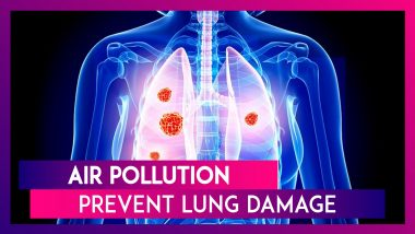 Delhi Air Pollution: Ways to Prevent Further Lung Damage And Reduce Cancer Risk