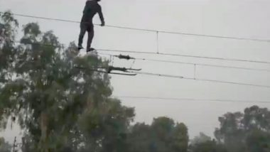 Madhya Pradesh: Man Dangles From Overhead Wire at Dabra Railway Station in Gwalior, GRP Officials Come to Rescue; Watch Video